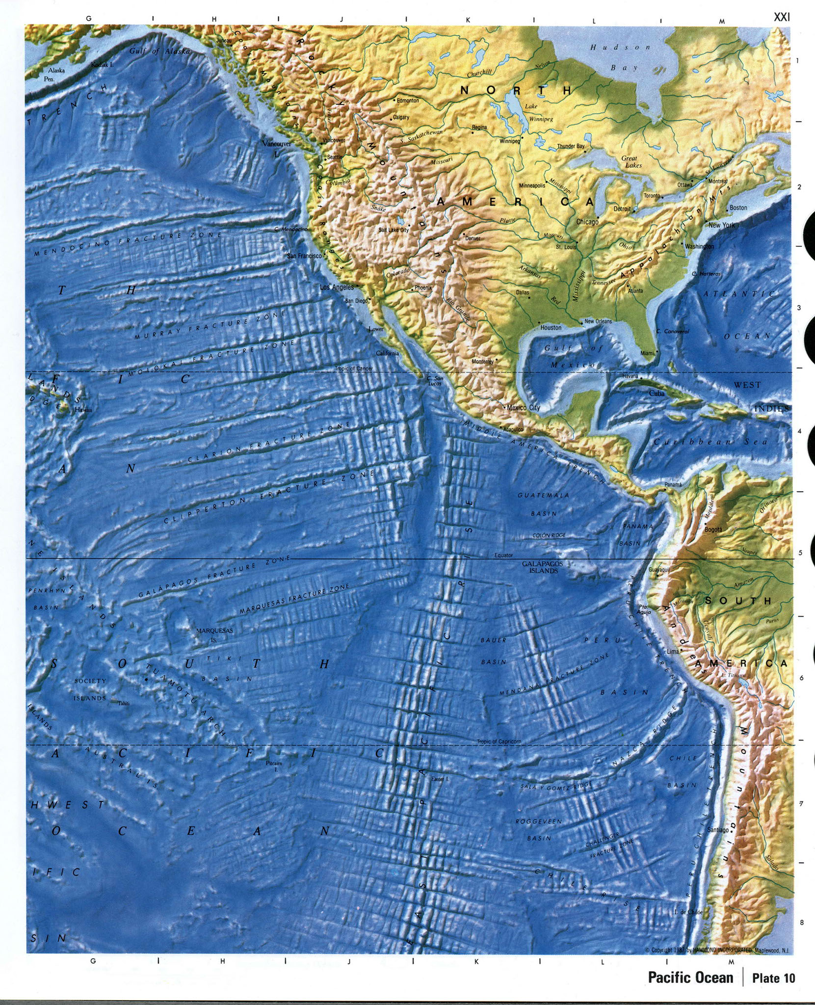 Pacific ocean underwater map